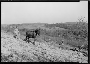 lossy-page1-800px--Boy_plowing_potato_field_with_a_mule_and_bull-tongue_plow_on_steep_slope_on_J._W._Melton_farm_on_Andersonville..._-_NARA_-_532651.tif