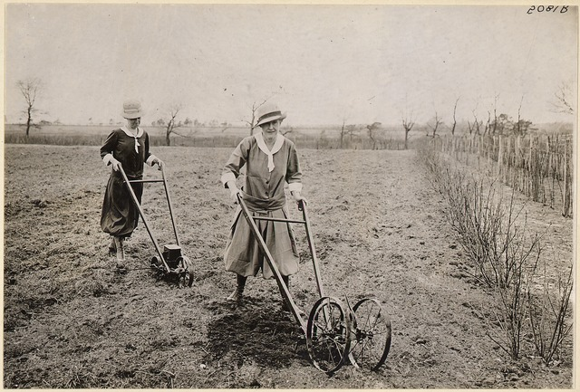 Farm Women in Bloomers